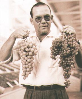 Julio em 1935, quando coordenava a Festa da Uva de Jundiaí.