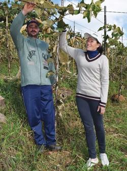 Fabiano Fabro e a esposa Alina participam do projeto na cidade de Farroupilha.
