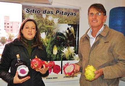 case pitayas