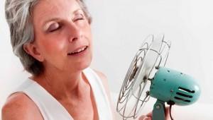 Ondas de calor, os chamados fogachos, é o sintoma mais comum sentido pelas mulheres que iniciam o climatério (período caracterizado por alterações hormonais que culminam na última menstruação)